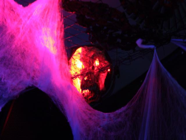 halloweenelf_09.JPG